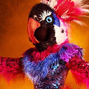 Costume Exotic Bird The Masked Dancer