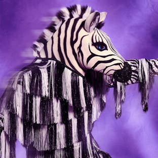 Costume Zebra The Masked Dancer