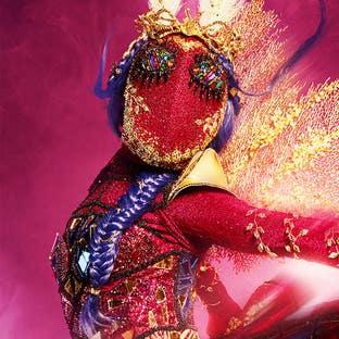 Costume Moth The Masked Dancer