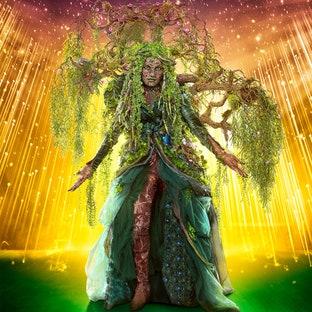 Mask Mother Nature The Masked Singer